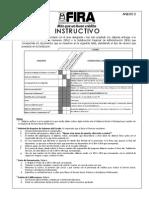 Anexo 2 - Nuevo Instructivo