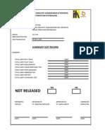 Form Summary Ndt Record-xxxxxx