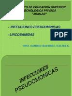 INFECCIONES PSEUDOMONICAS-LINCOSAMIDAS