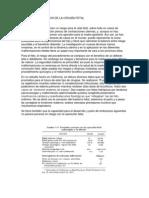 RIESGOS Y BENEFICIOS DE LA CIRUGÍA FETAL