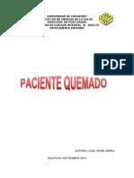 Protocolo de Quemado de Irene ORIGINAL..Revi Neris 16102013