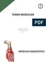 Clase Muscular 2013 ENF