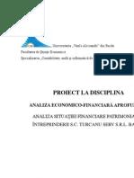 Proiect AEF