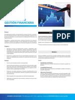 Diplomado en Gestion Financiera