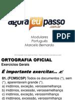 AEP2011 - Portugua¦Çs para Concursos (G&T) - AULA 11 - Ortografia Oficial 3 (Exerc-¦cios Gerais)