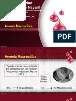 Anemia Macrocitica1