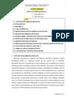 Direitos Humanos - Bruno Pinheiro - 2013.1