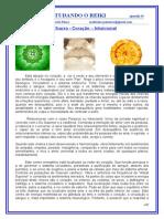 REIKI EM UMA VISÃO HOLISTICA - 2011 -2012 - 19_nd(1).doc