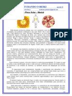 REIKI EM UMA VISÃO HOLISTICA - 2011 -2012 - 18_nd.doc
