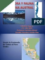 Flora y Fauna Zona Austral