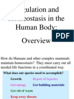 Level Human Body Systems Description and Functions