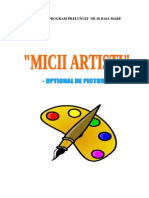 Optional Pictura Grupa Mijlociee