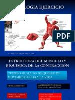 Estructura Del Musculo