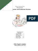 Termochemistry Report