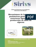 Articulo Fibra Alpaca Montenegro