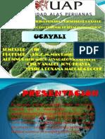 Ucayali Diapositivas..