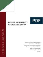 Cv Roque Ayora Ascencio 2013