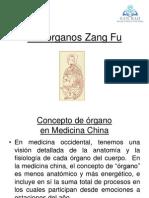 05 Organos Zang Fu 2010