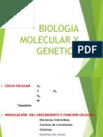 Biologia Molecular y Genetica