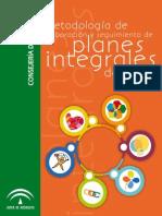 Metodologia Planes Integrales