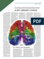 El mejor mapa del 'cableado' cerebral