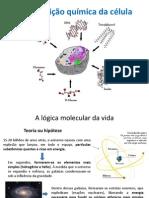 Composição química da célula_