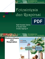 Fotosintesis dan respirasi1.ppt