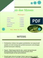 Mitosis-Meiosis