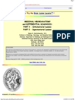 Brain Tumor Diagnosis by Location