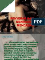 PENYEBAB BAYI MENINGGAL MENDADAK.pptx
