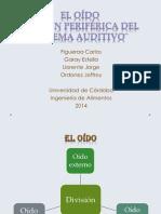 DIAPOSITIVAS OÍDO.pptx