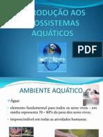 Aula Ecossistemas Aquáticos
