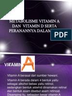 Vitamin Lrt Lemak