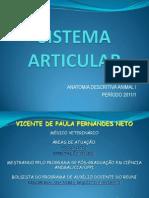 sistemaarticularvicentefernandes-111021082751-phpapp02