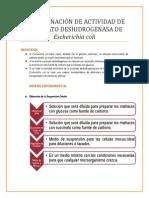 PRÁCTICA 3. DETERMINACIÓN DE ACTIVIDAD DE SUCCINATO DESHIDROGENASA EN Escherichia coli