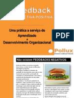 Feedback Apresentacao Programa Pollux