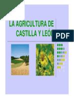 LA AGRICULTURA DE CASTILLA Y LE+ôN