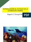 Diversidad Animal - I- Cap32
