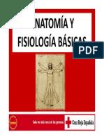 ANATOMÍA Y FISIOLOGÍA BÁSICAS