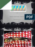 Israel-Palestine Conflict N 2