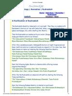 Purification of Rudraaksh.pdf