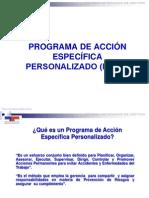 Presentacion de PAEs TSE-2013