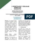 Células Vegetales y Células Animales Practica 2 (1)