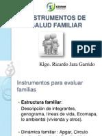 Instrumentos de Salud Familiar 2010