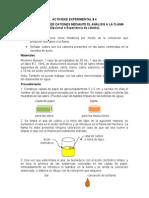 214874992 Actividad Experimental 4 Identificacion de Cationes