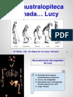 Una Australopiteca Llamada Lucy