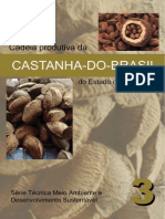 Castanha-do-Brasil no  Amazonas