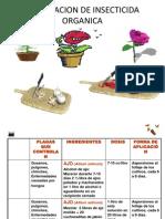 Preparacion de Insecticida Organica