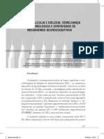 Discalculia e Dislexia Semelhana Epidemiolgica e Diversidade de Mecanismos Neurocognitivos