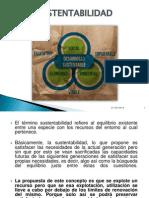 Presentación1 desarrollo